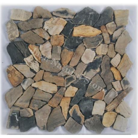 Crazy Cuts Petrified Wood